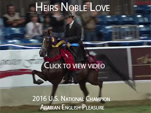 heirs noble love video